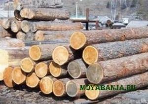 Выбор дерева для строительства стен бани