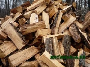 Какими дровами лучше топить баню