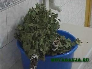 Подготовка веника к банной процедуре